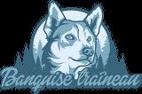 banquise-traineau-logo